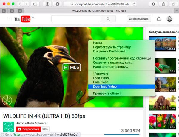как скачать видео с youtube